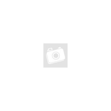 Sponser Vegan Protein Neutral fehérjepor
